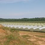 greenhouse 7